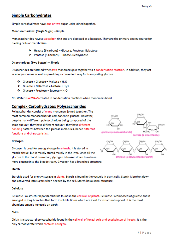 grade 11 biology study notes Study skills and strategies (15)  eleventh grade (grade 11) biology questions you can create printable tests and worksheets from these grade 11 biology questions.